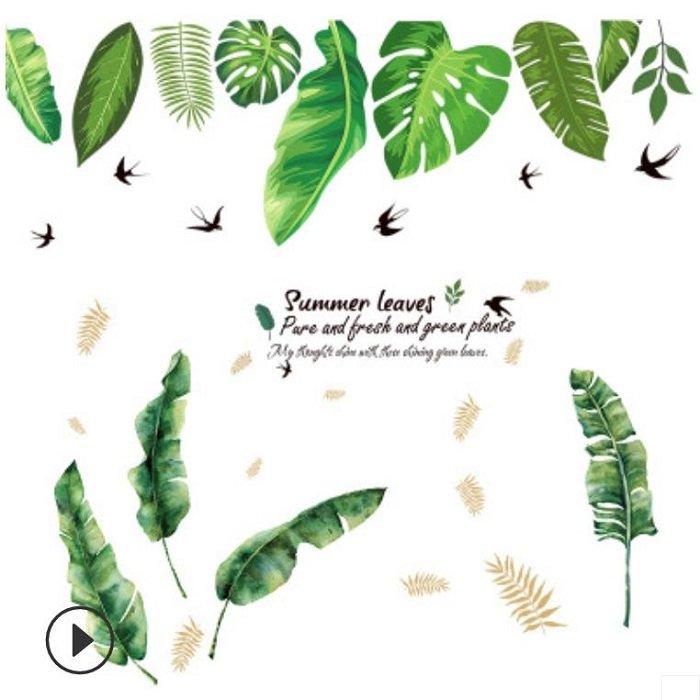 Combo decal dán tường lá chuối xanh lá xanh nhiệt đới 3