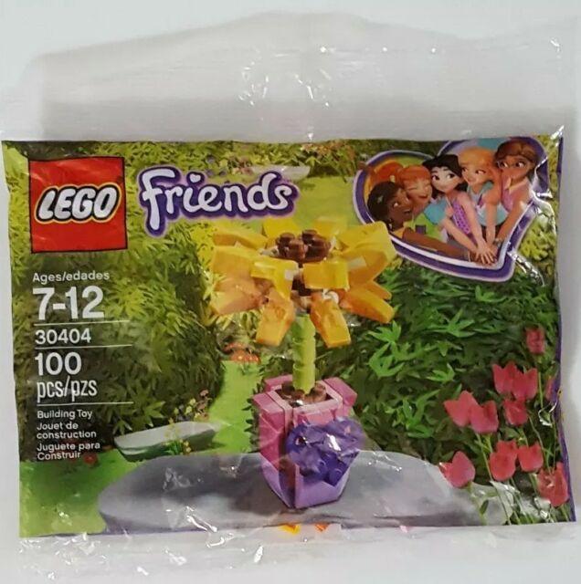 Bộ LEGO Hoa Tình Bạn 30404- Hàng chính hãng MYKINGDOM