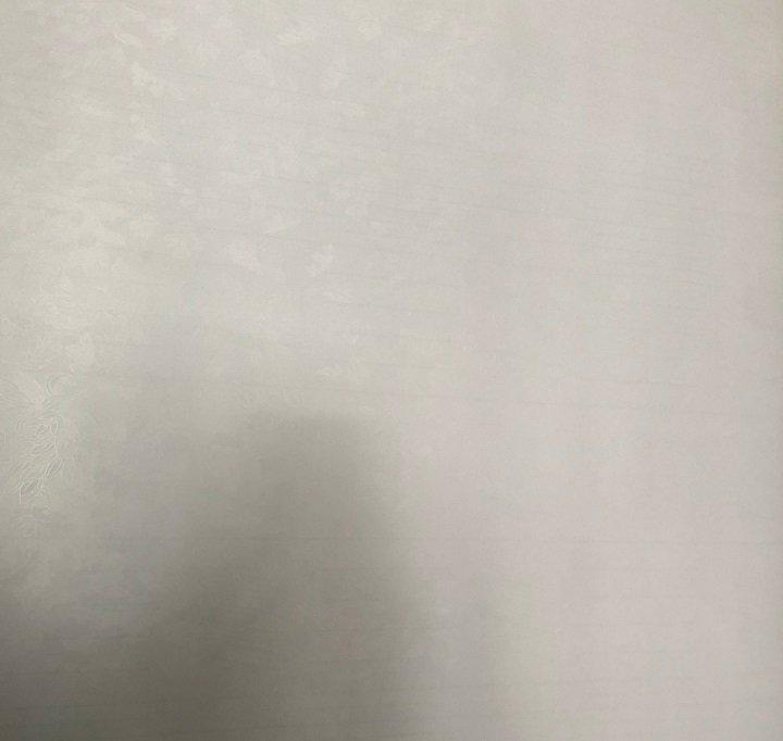 Decal Cuộn Kính Mờ Hoa Văn Lá Khổ 1.2m