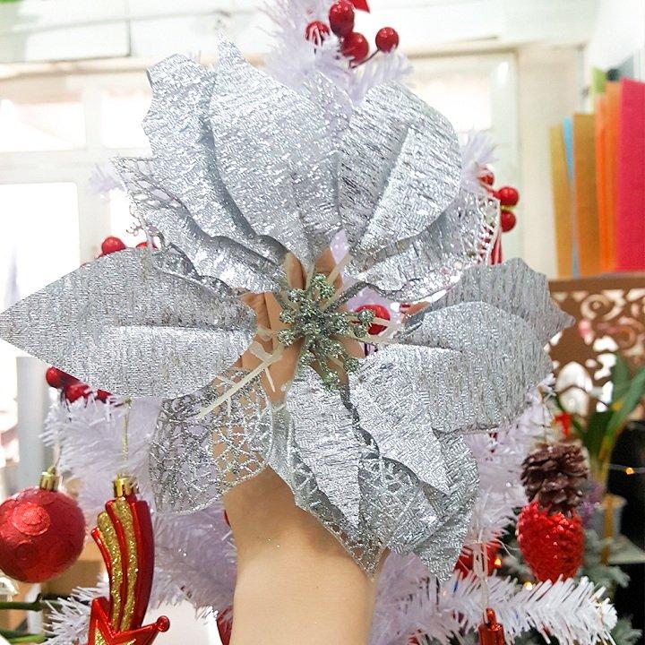 Bông trạng nguyên trang trí cây thông Noel