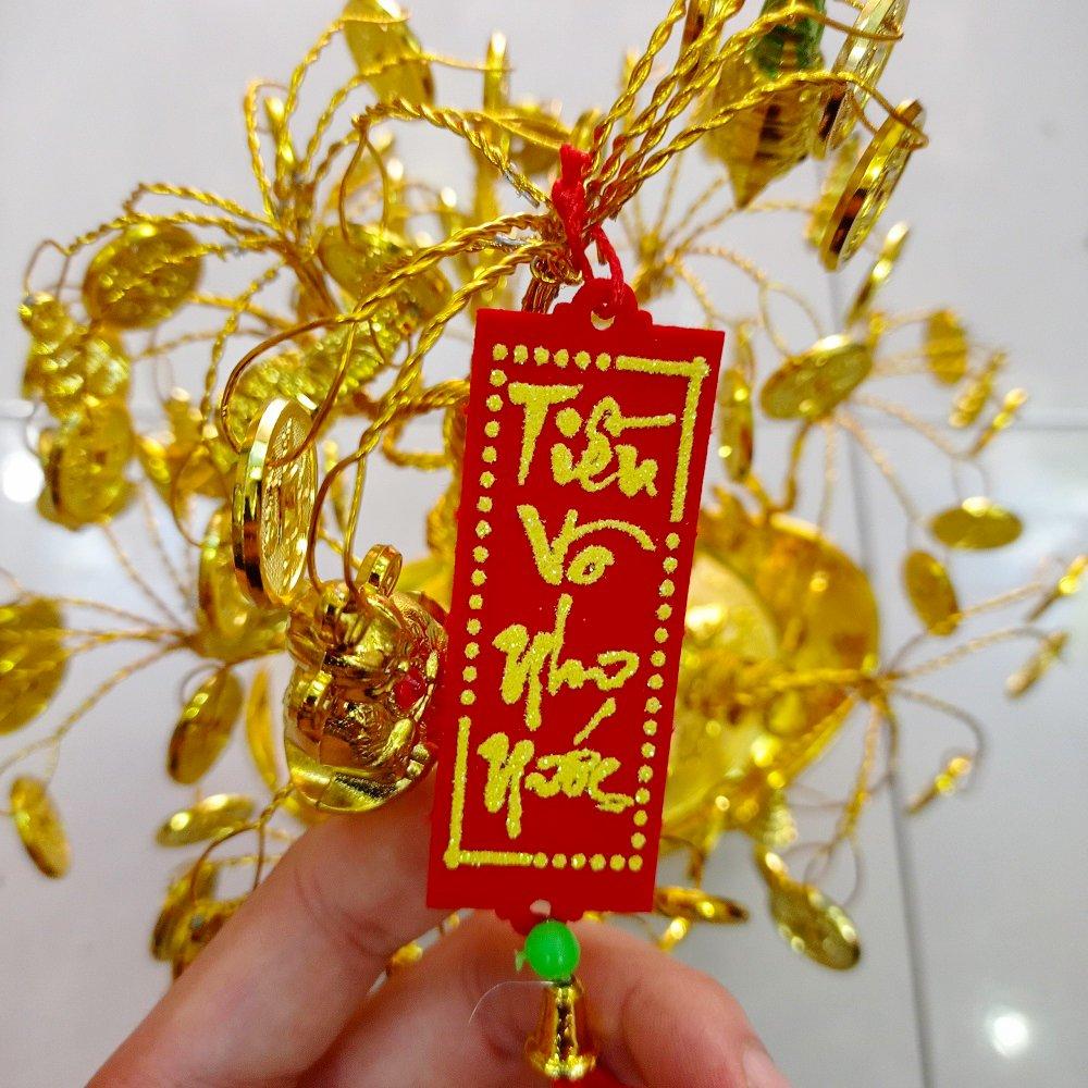 Cây phát tài quả thơm vàng liễn đỏ trang trí tết