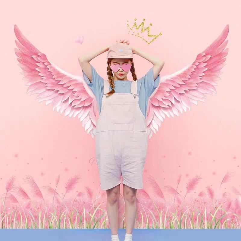 Decal dán chân tường cỏ hồng và đôi cánh hồng