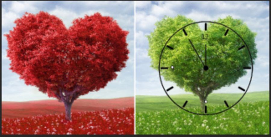 Tranh đồng hồ Cây trái tim 2 tấm 25x25x2