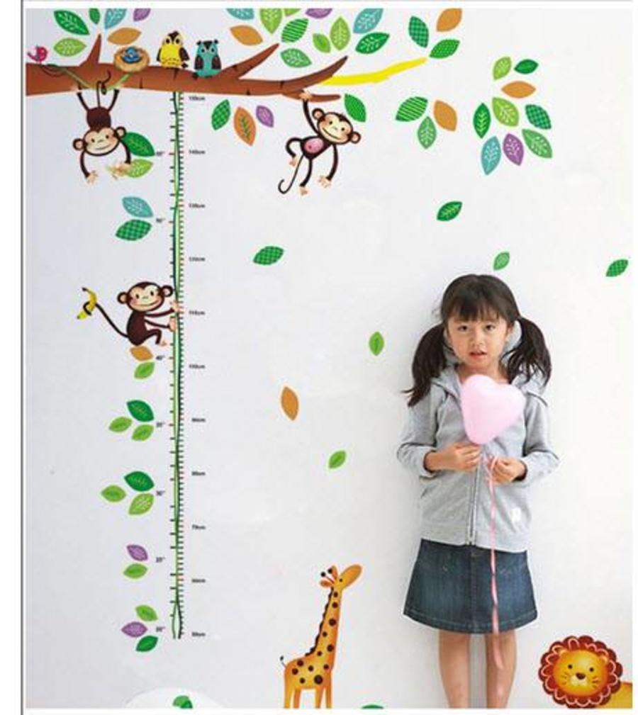 Thước đo vườn thú 3