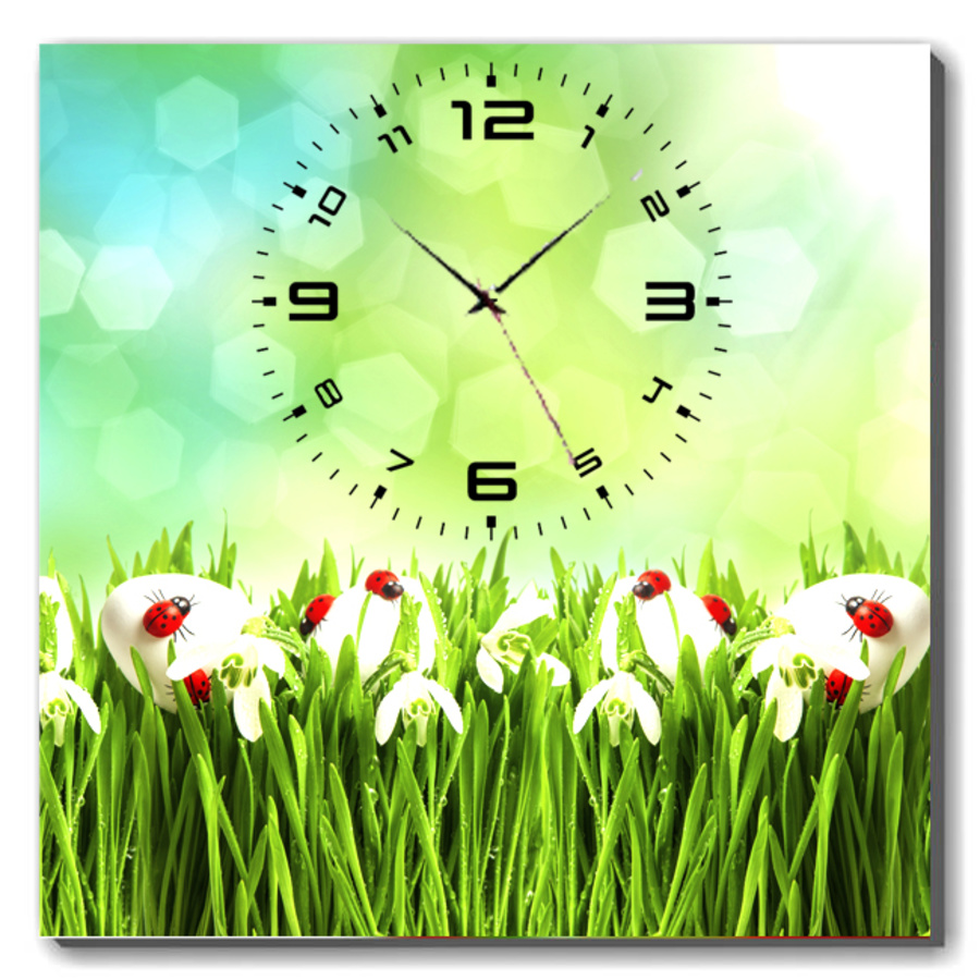 Tranh đồng hồ cỏ xanh khổ 40x40cm