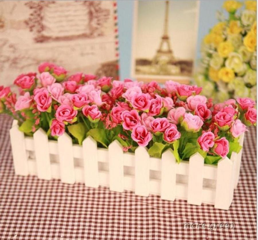 Chậu hàng rào hoa hồng nụ 2