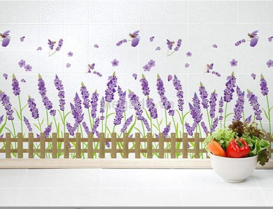 Hàng rào lavender