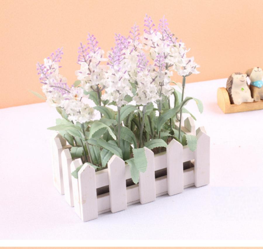 Hàng rào lavender chữ nhật