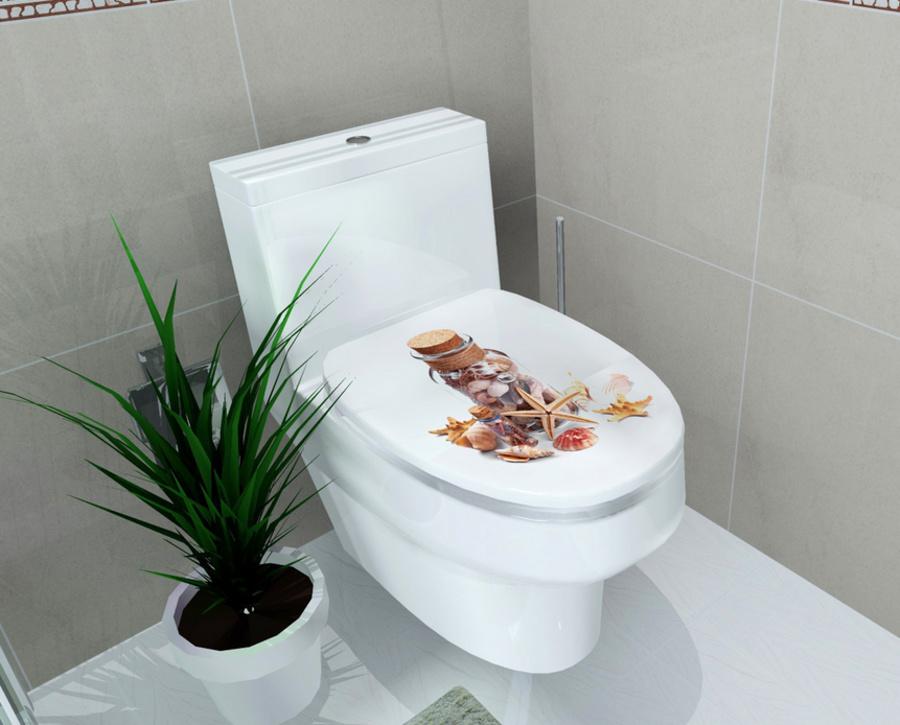 Dán toilet lọ sao biển