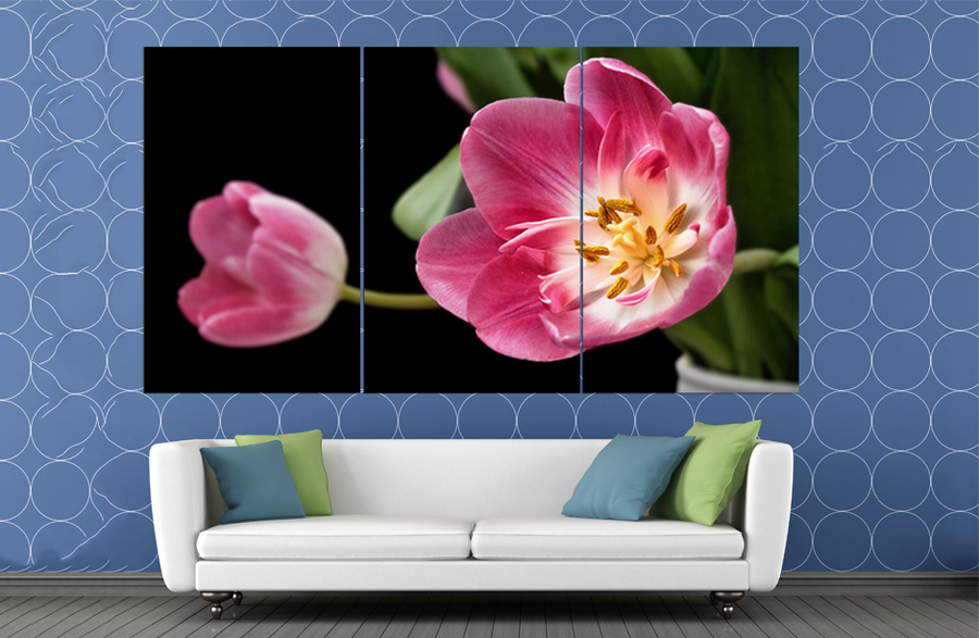 Tranh treo tường cành hoa tulip