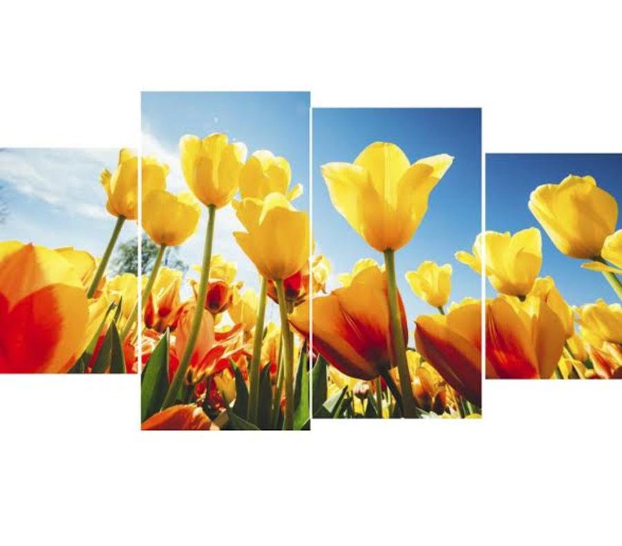 Tranh treo tường vườn hoa tulip