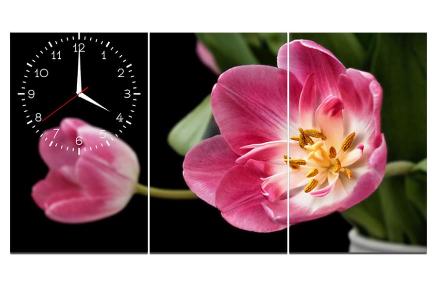 Tranh đồng hồ cành hoa tulip