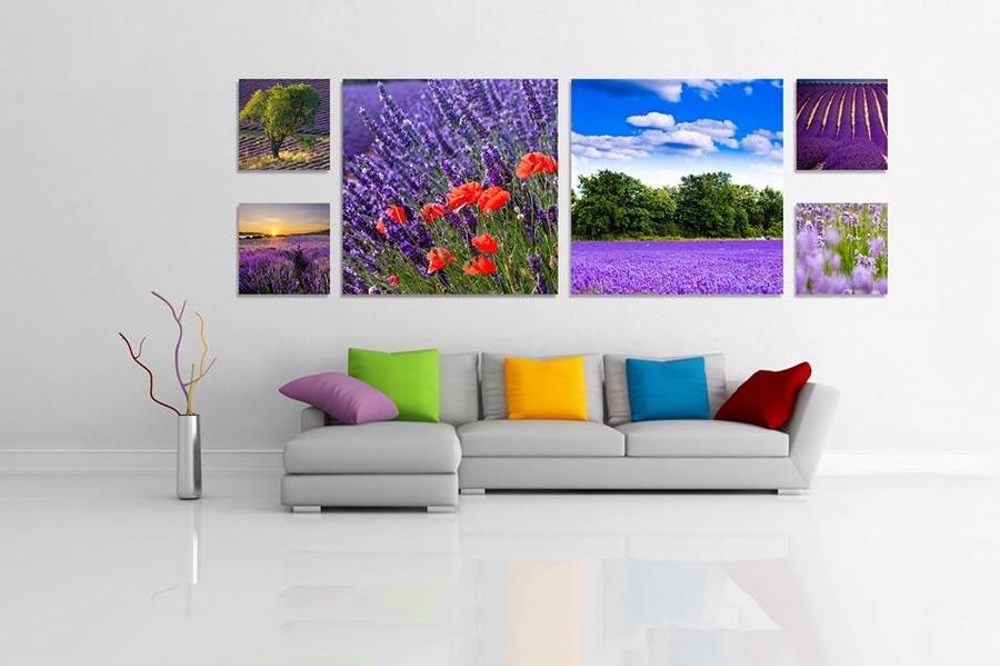 Tranh treo tường cánh đồng Lavender