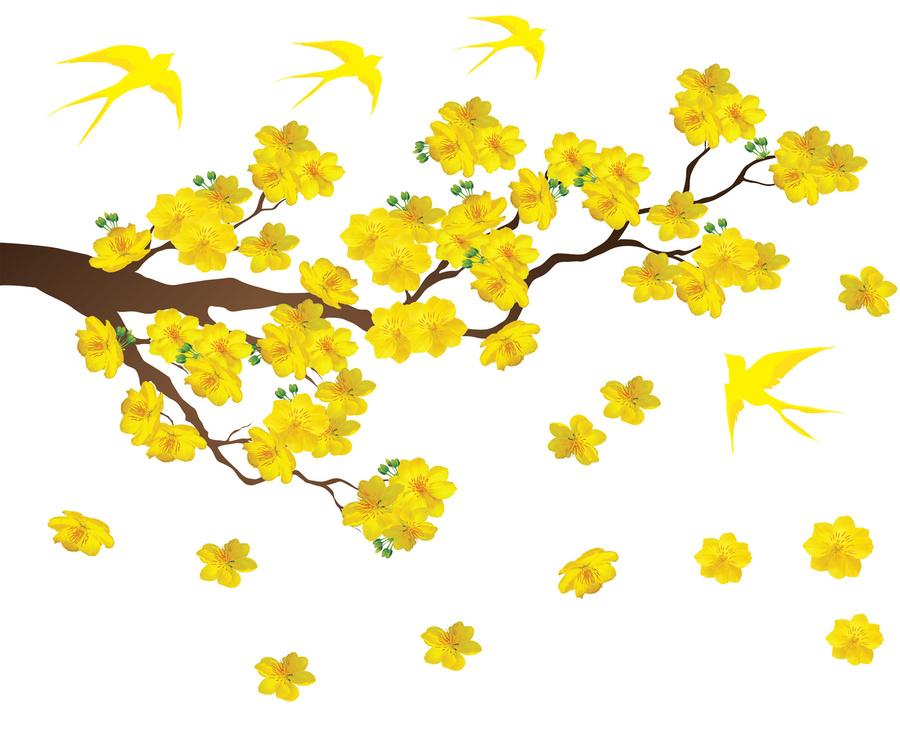 Decal mai vàng và chim én đón xuân 2