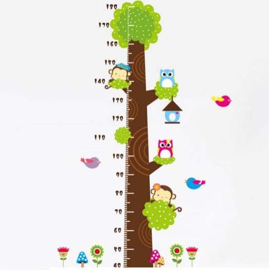 Decal dán tường thước đo cây xanh