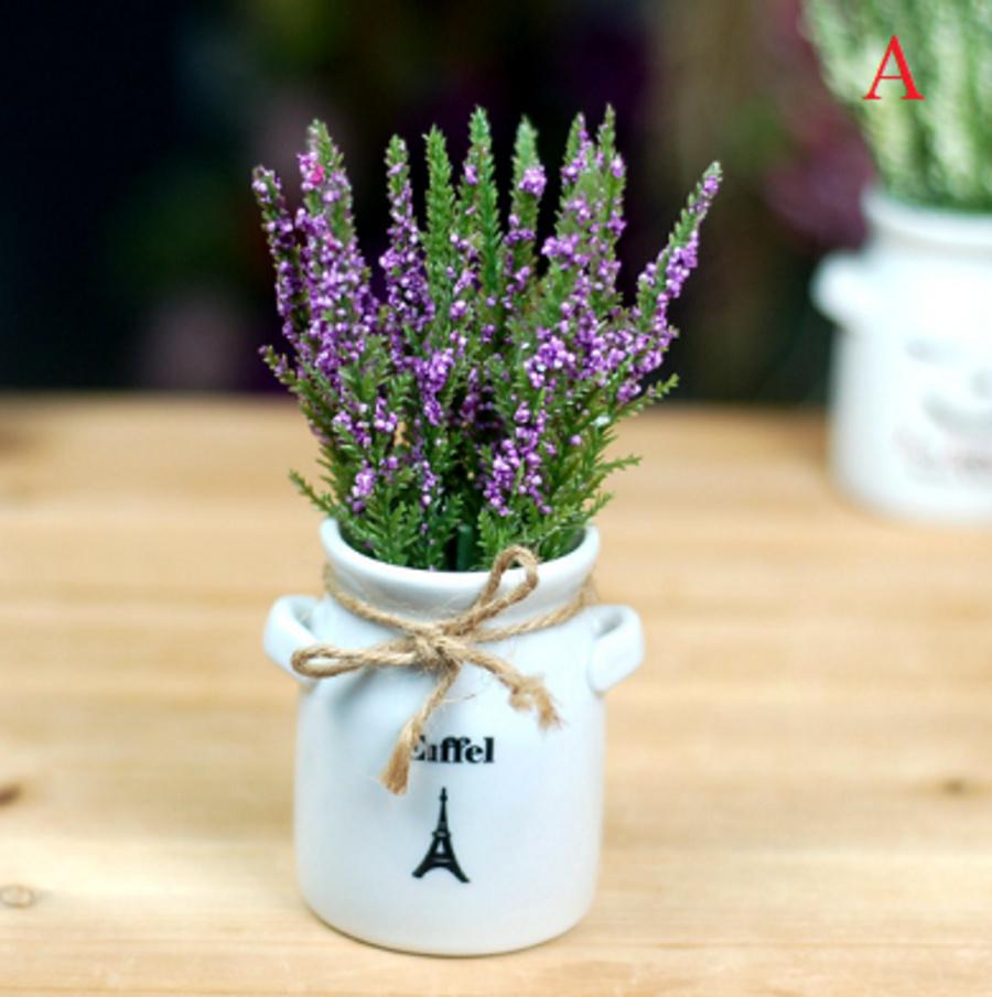 Chậu gốm hoa lavender