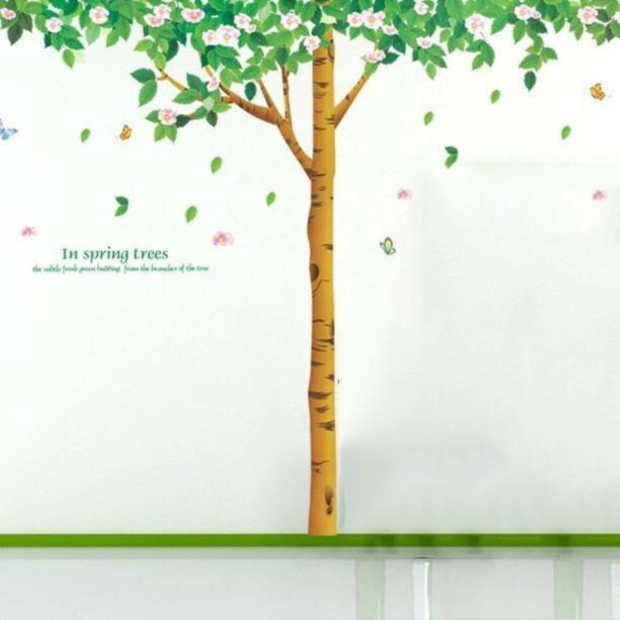 Decal dán tường cây bóng mát 3
