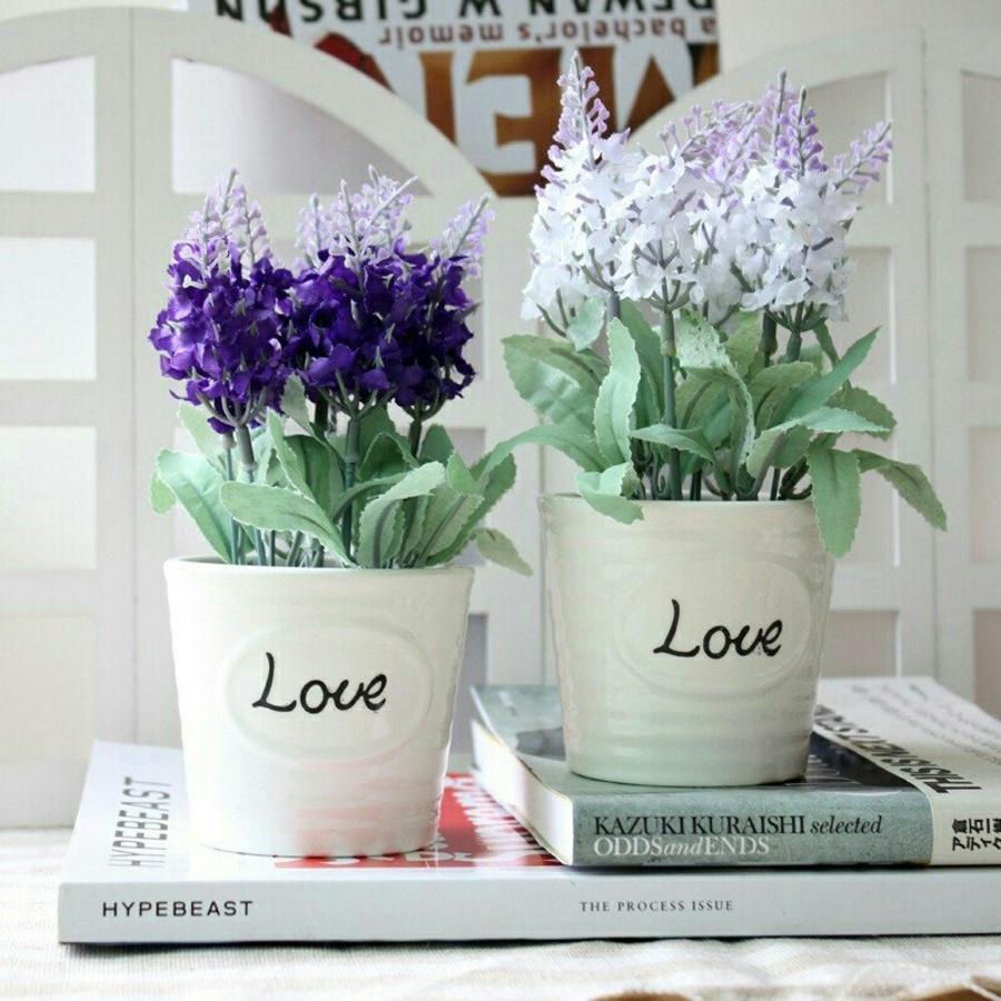 Chậu hoa lavender trắng