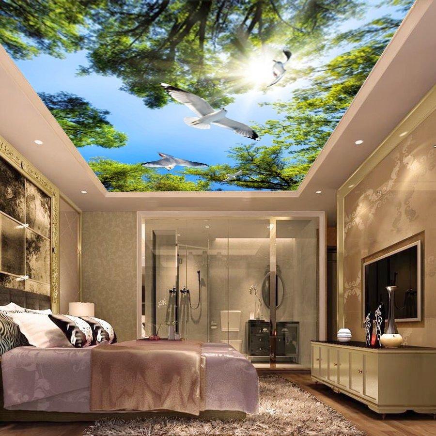 Tranh dán tường trần nhà 3D FQ432