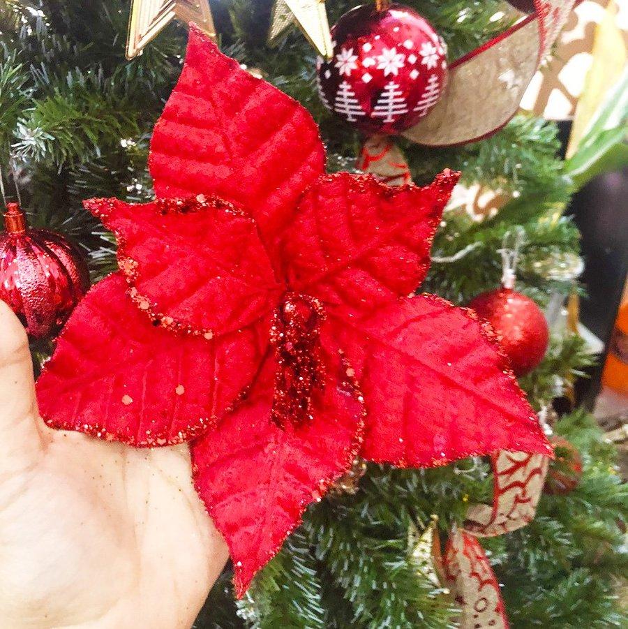 Hoa tầm gửi đỏ trang trí noel