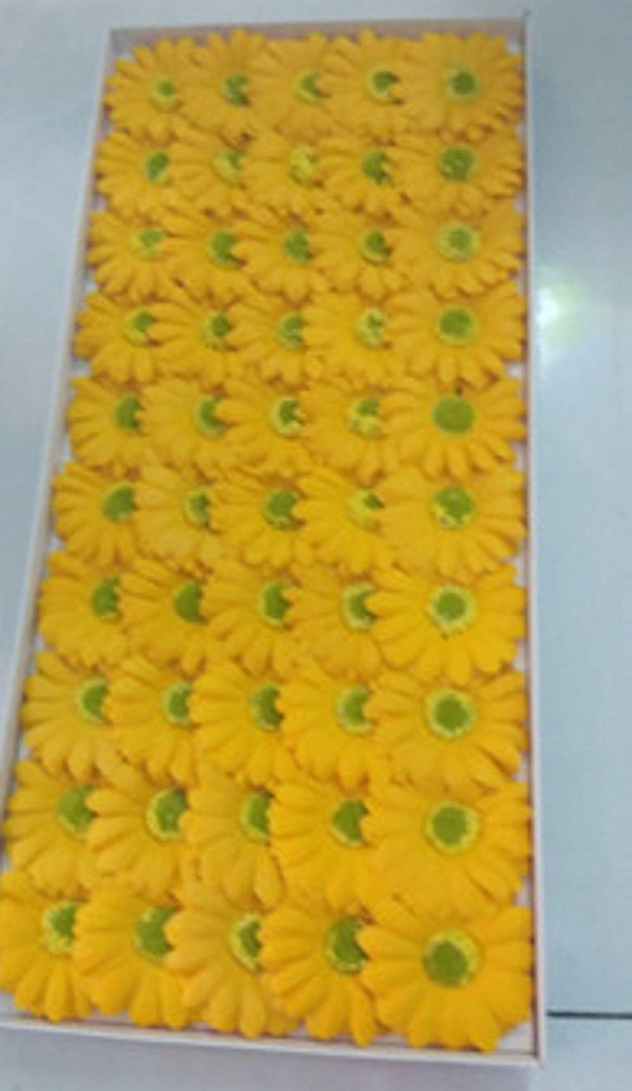Hộp hoa cúc họa mi sáp thơm
